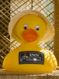 Ima rubber duck