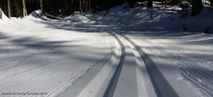 XC ski trails in snow