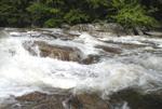 jackson falls in summer